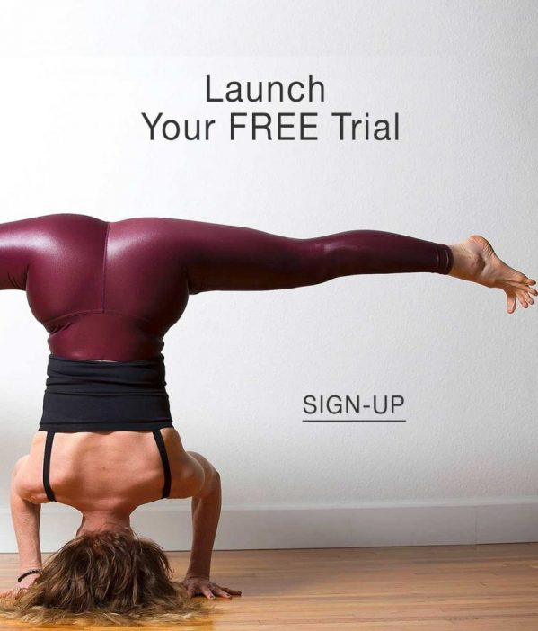 Launch your free trial of the OM Body Method